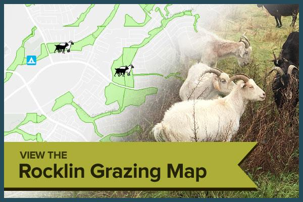 Rocklin Grazing Map