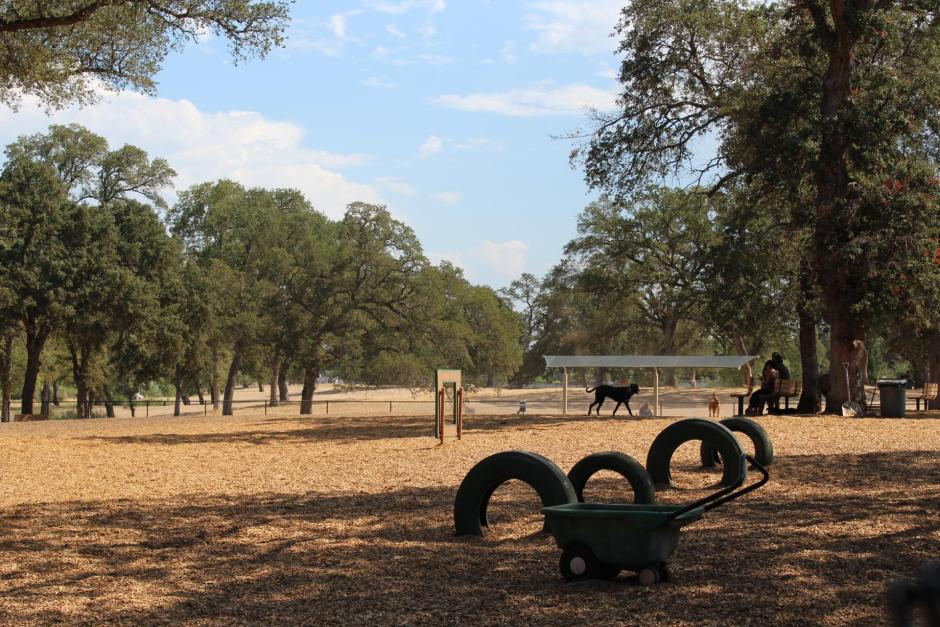 The RRUFF Dog Park in Rocklin, California is about an acre and has a tire agility course