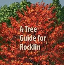 Rocklin Tree Guide