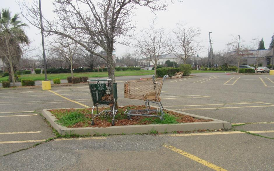 Abandoned Shopping Carts