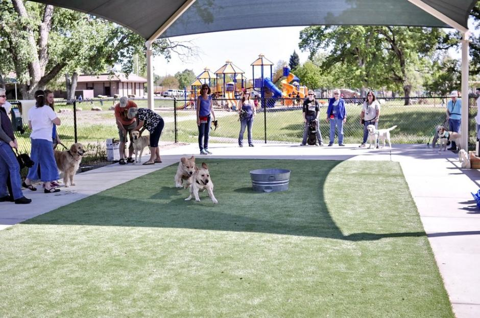 At the RRUFF Dog Park in Rocklin, California, People watch two dogs in the special needs area of RRUFF dog park, which has concrete around dog-safe turf.